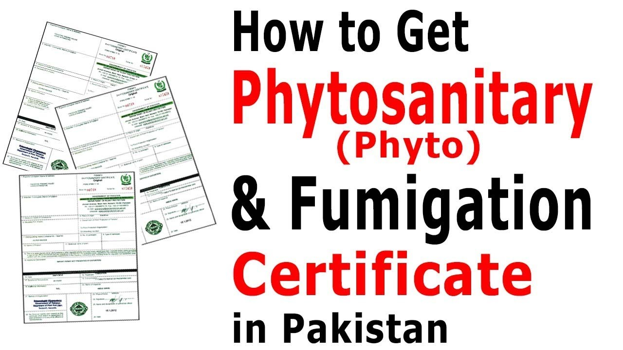 How to Get Phytosanitary Certificate in Pakistan – Procedure to Get Fumigation Certificate In Pakistan