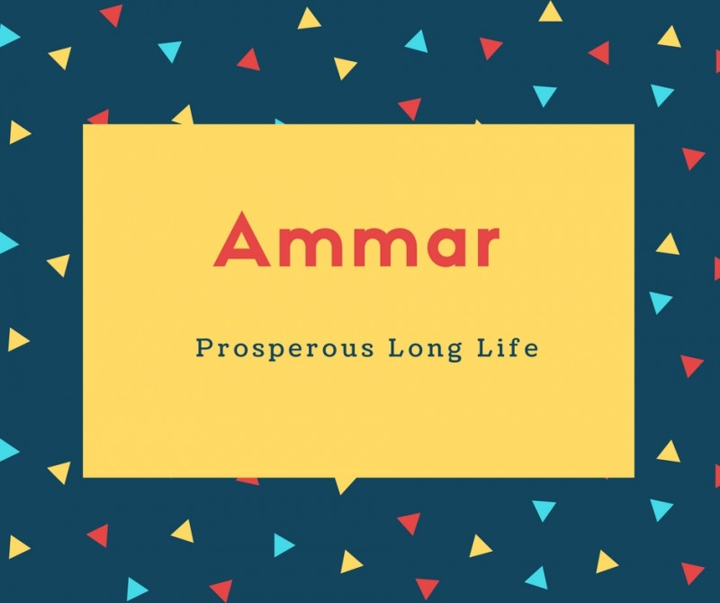 What Is Ammar Name Meaning In Urdu Ammar Meaning Is