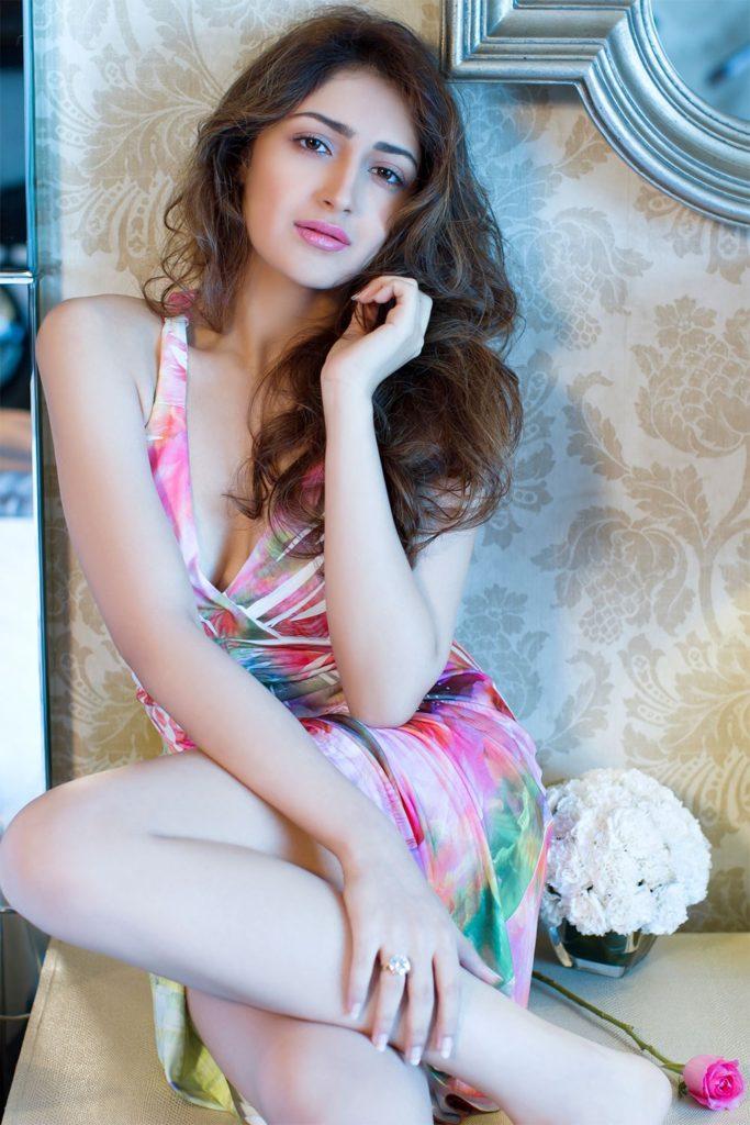 Actress Sayesha Saigal Portfolio Images