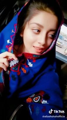 Alizeh Shah Beautiful Videos on Tiktok