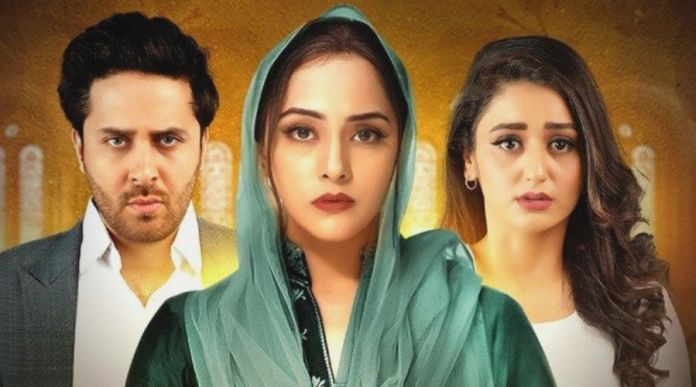 Tamanna: Cast, Story, OST and Timing Starring Nosheen Ibrahim, Haroon Shahid