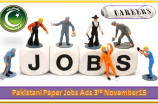 Pakistani Paper Jobs Ads 03 November 15