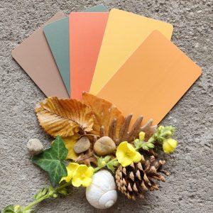 Őszi barangoló 2. kiadás - színkártyák