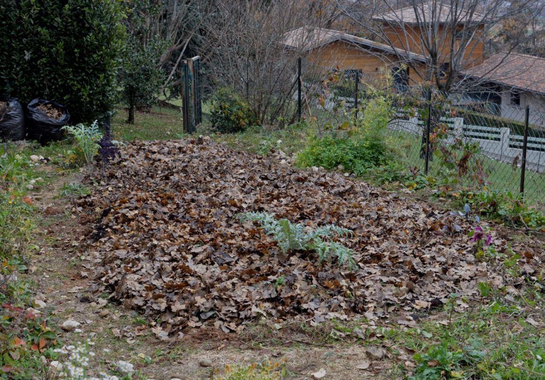leaves blanket vegetable garden