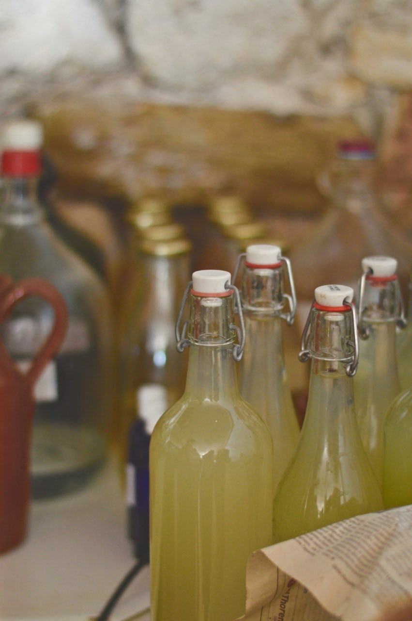 sirop ferme lespinasse plantes sauvage comestible