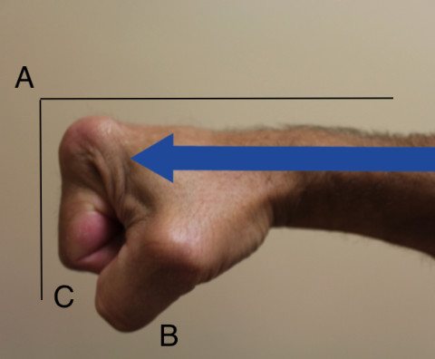 Figure 1 - Fore Fist Technique