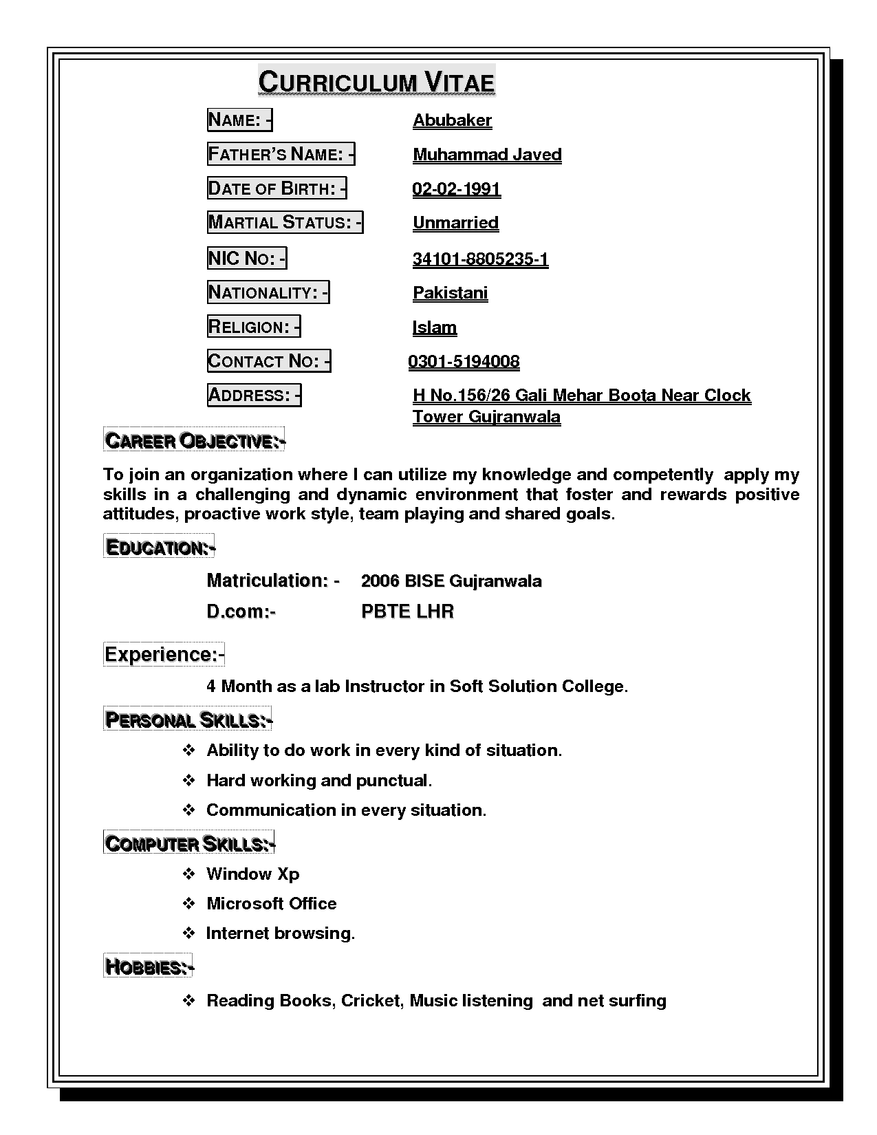 Example of cv for job