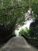 Parque Fernando Peñalver - Valencia Venezuela