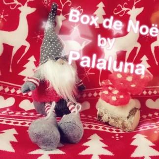 Box Surprise de Noël