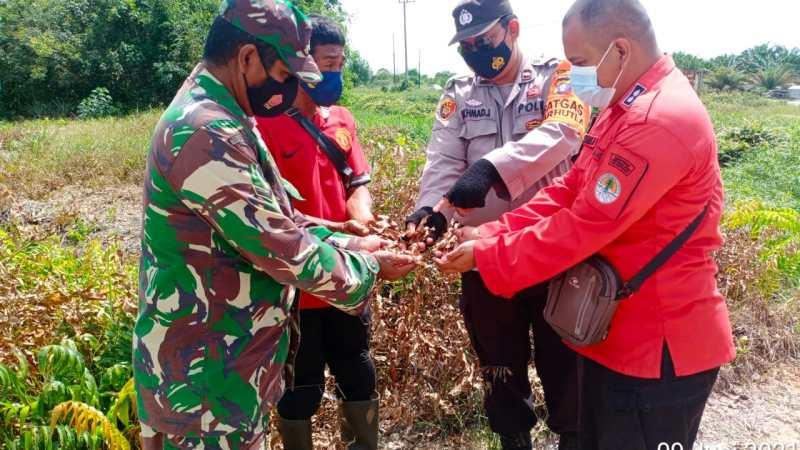 Cegah Karhutla, Koramil Arsel dan Tim Patroli Terpadu Cek Lahan Kosong
