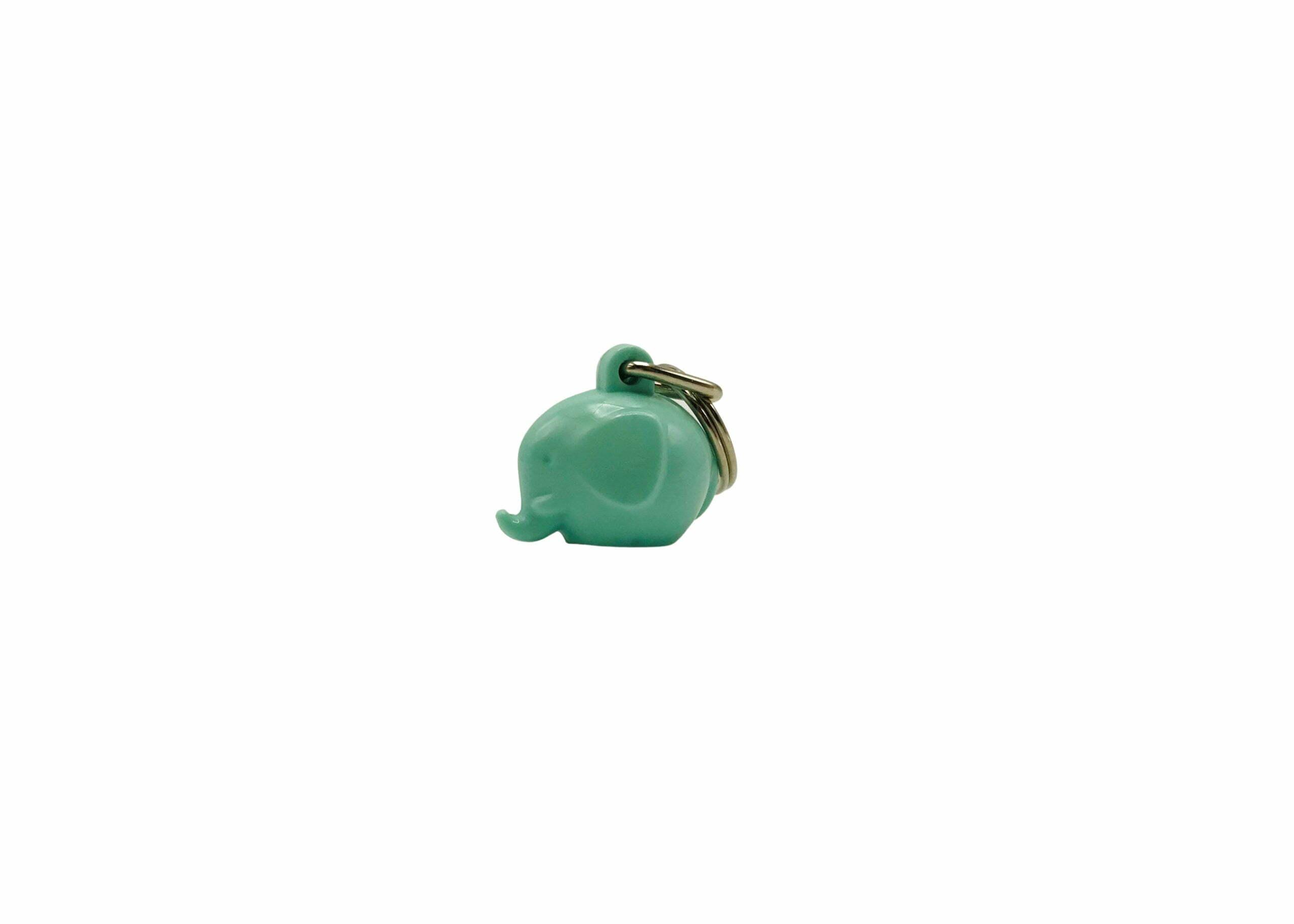 Fantti keychain_mint green