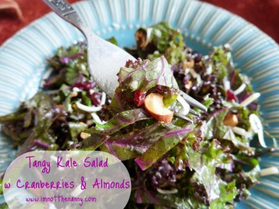 Tangy Kale Salad with Cranberries and Almonds
