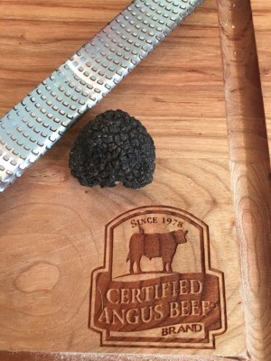 Fresh Black Winter Truffle