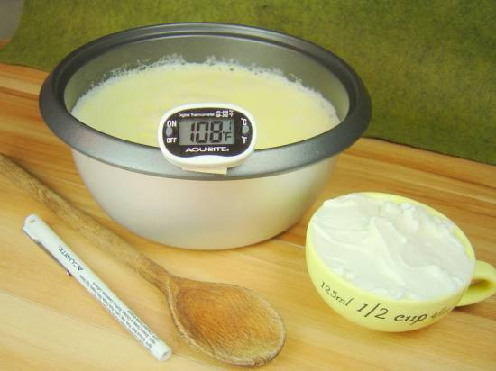 Making Yogurt at Home (From Scratch!)