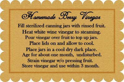 Homemade Berry Vinegar recipe