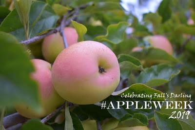 Welcome to AppleWeek!