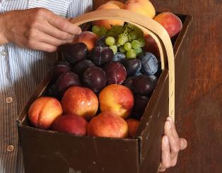 Fresh Ontario Fruit