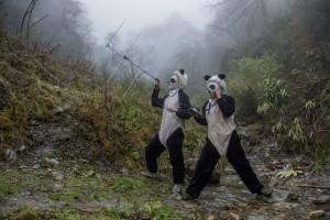 Ami Vitale. A vida salvaxe dos pandas