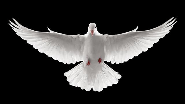 Terço pedindo os Dons do Espírito santo