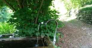 Neste trecho da trilha existem muitas bicas de uma água deliciosa