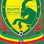 Profile picture of EthiopianSport
