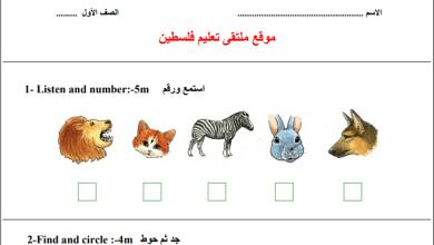 Photo of مجمع امتحانات نصف الفصل الأول لمبحث اللغة الإنجليزية للصف الأول الأساسي