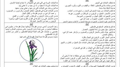 Photo of تلخيص أتعلم الأفضل لمبحث التربية الوطنية والحياتية للصف الأول الفصل الثاني