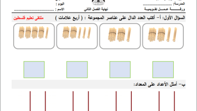 Photo of مجمع الامتحانات النهائية الرائعة لكافة مواد الصف الأول للفصل الثاني