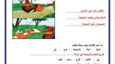 Photo of أوراق عمل رائعة ومجابة لدرس الديك الذكي لمبحث اللغة العربية للصف الثاني
