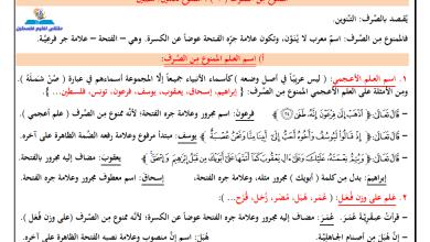 Photo of مراجعة قوية جدا ومجابة لقواعد اللغة العربية والعروض للتوجيهي كافة الفروع