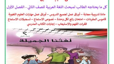 صورة كل ما يحتاجه الطالب من ملفات تعليمية لمبحث اللغة العربية للصف الثاني الفصل الأول