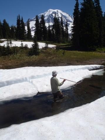 Zach taking water depth in a frigid alpine pond. Mt. Rainier National Park 2013.