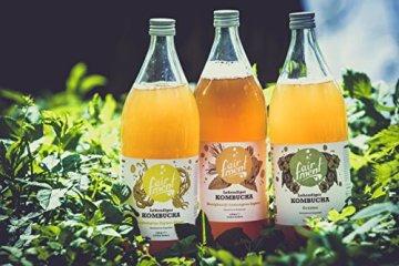 3 Liter Original Bio Kombucha Tee Getränk natürlich fermentiert und nicht pasteurisiert / Rohkost (3er Mix) - 2