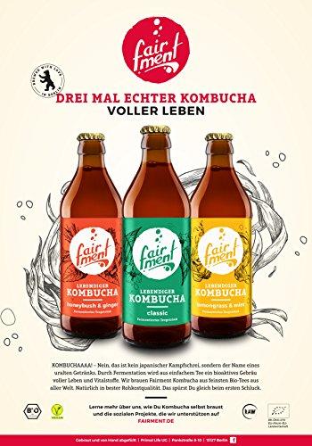 3 Liter Original Bio Kombucha Tee Getränk natürlich fermentiert und nicht pasteurisiert / Rohkost (3er Mix) - 6