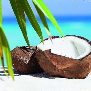 Kokosöl nativ Bio Qualität (1000ml) Hautpflege Haarpflege Kochen Braten Backen Fellpflege aus erster Kaltpressung - 4