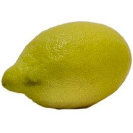 Obst & Gemüse Bio Zitronen (1 x 1 Stk) - 1
