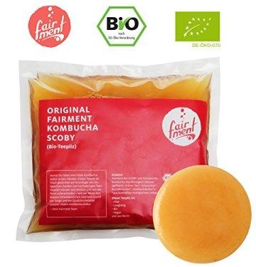 Original Kombucha Set mit vitalem Kombuchapilz und Starter für bis zu 3 L pro Ansatz mit einfacher Anleitung, Rezept und Erfolgsgarantie von Fairment® - 3