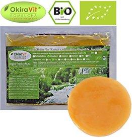 Original-Kombucha-Teepilz Premium Qualität + Bio-Kombucha-Getränk für 1 L, Anleitung + Anwuchsgarantie. Aus dem Heilbad Bad Kohlgrub - 1