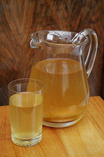 Original-Kombucha-Teepilz Premium Qualität + Bio-Kombucha-Getränk für 3 L, Anleitung + Anwuchsgarantie. Aus dem Heilbad Bad Kohlgrub. - 4