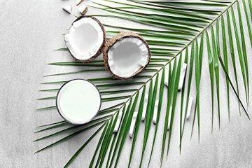 PRIMAL MCT Öl in Glasflasche | Extrakt aus Kokosöl | Geschmacksneutral | Caprylsäure (C-8) und Caprinsäure (C-10) | Bulletproof Coffee | MCT Oil - 100ml - 6