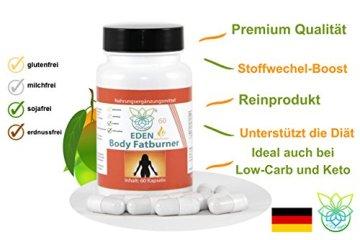 VITARAGNA Body Fatburner Meta Booster 60 Kapseln ohne Koffein mit Garcinia-Mangostana, Spaeranthus-Indicus, Fettverbrenner, Diät-Pillen, Abnehm-Pillen, natürlich abnehmen auch bei Bauchfett - 3