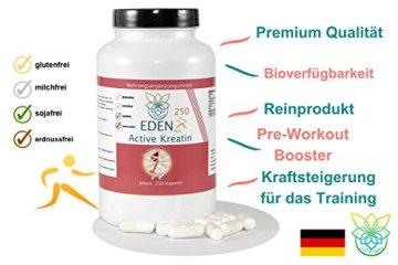 VITARAGNA Eden Active Kreatin Plus 250 Kapseln, reines, hochwertiges Creatin Monohydrat bzw. Creatine Monohydrate, Kraftsteigerung & Muskelaufbau, clean - 3