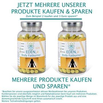 VITARAGNA Eden Body Fatburner Day 120 Kapseln, Fettverbrenner Diät Pillen bzw Abnehm-Pillen, Unterstützung zum natürlich abnehmen, auch bei Bauchfett - 6