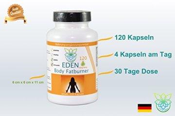 VITARAGNA Eden Body Fatburner Ning-Hong 120 Kapseln, Fettverbrenner Diät-Pillen bzw Abnehm-Pillen mit L-Carnitin & Bitterorange, natürlich abnehmen bei Bauchfett, clean - 4