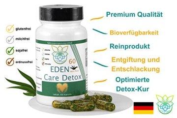 VITARAGNA Eden Care Detox Aktiv Plus 60 Kapseln Complex mit Coenzym-Q10, cleanse und vegan, Entgiftungskur, Entgiftung, Darmreinigung, Leberreinigung, Abnehmen in der Diät - 3