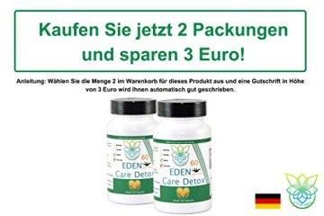VITARAGNA Eden Care Detox Aktiv Plus 60 Kapseln Complex mit Coenzym-Q10, cleanse und vegan, Entgiftungskur, Entgiftung, Darmreinigung, Leberreinigung, Abnehmen in der Diät - 5