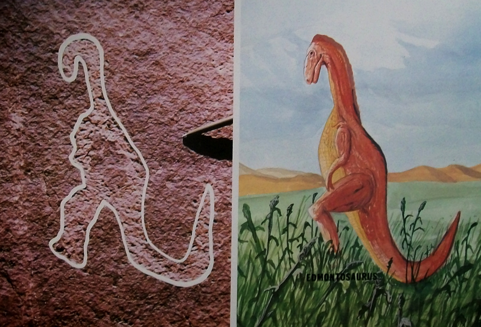 Image result for ancient dinosaur depictions