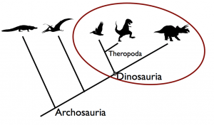 See, birds are dinosaurs.