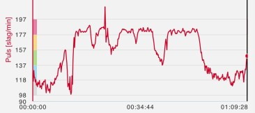 Heart rate during the ride.