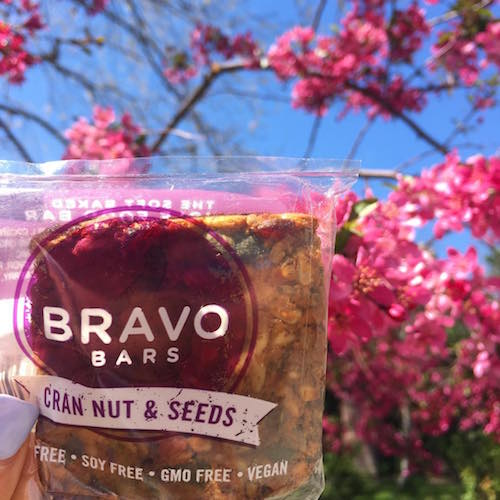 Cran Nut and Seeds Bravo Bars + Cherry Blossoms - Nutritious U - Paleo Friendly - Paleo Foundation